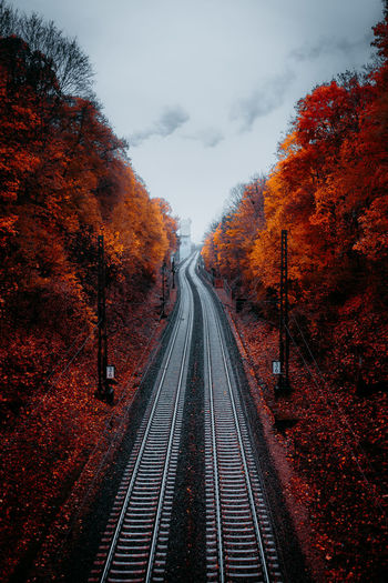 Autumn colors Autumn Leaves Orange Autumn Autumn🍁🍁🍁 Autunno Autumn Colors Colori Landscape Paesaggio Beauty In Nature Change Day Diminishing Perspective Leaf Leaves 🍁 Nature No People Outdoors Railroad Track Scenics Sky Straight The Way Forward Train Train Station Transportation Tree