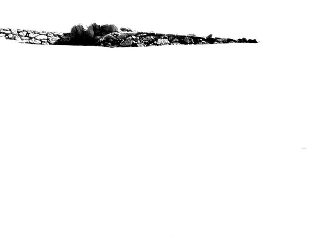oasis EyeEm Selects #EyeEm #blackandwhite #portugal #photography Bw Algarve Portugal Blackandwhite Photography Love Dark Art Bw_addicted Beach Sea Portugal_photography Bw_art Photos LoveBW Bird White Background Clear Sky Copy Space Sky