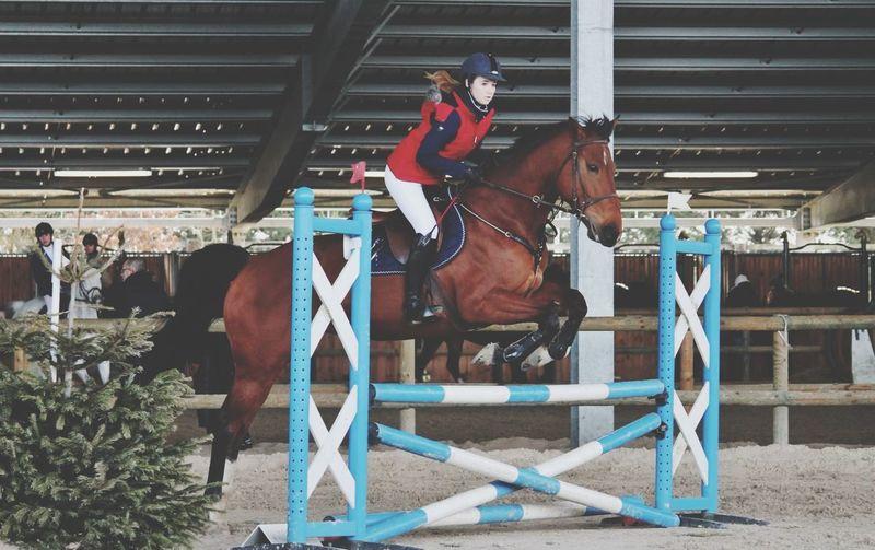 T'étais géniale comme d'hab !❤️. TDLJ❤️ Concours Horse Equestrian