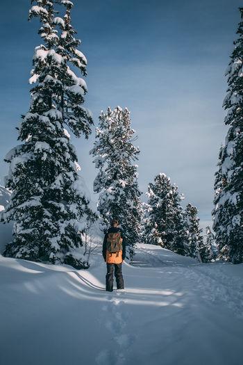 Man walking on snowy footpath against trees
