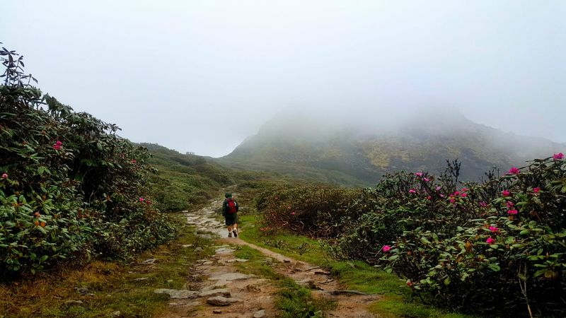 Taking the Druk Path Hikingadventures Adventure Nature Intothewild Capture The Moment Valleys Travel Holiday Landscape EyeEm Nature Lover Feel The Journey