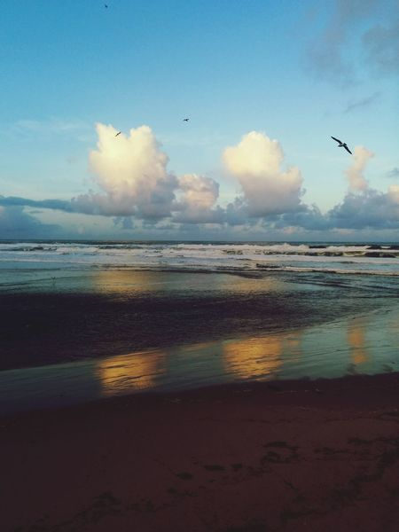 Oregon Coast Pacific Northwest  Beauty Everywhere Lovelovelove The Great Outdoors - 2015 EyeEm Awards