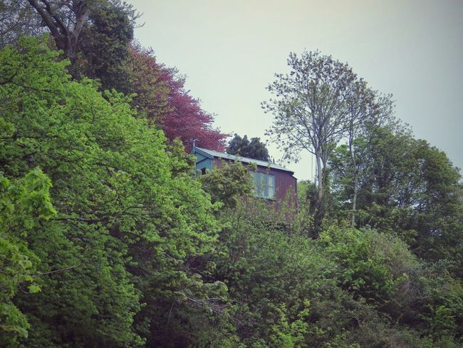 Wales Trees Shed Architecture Old Buildings Outdoors Taking Photos Green Check This Out Photography