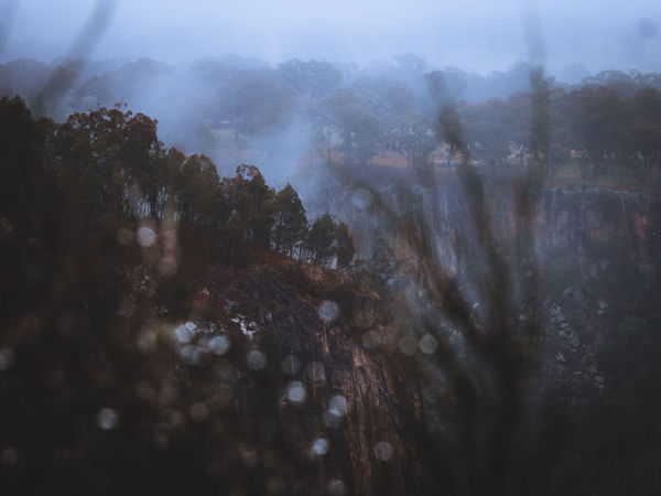 Misty mornings at Apsley Falls, Australia Australia Australian Landscape Nature Olympus Beauty In Nature Bokeh Cliff Day depth of field Fog Foggy Forest Hazy  Landscape Mountain Nature No People Outdoors Scenics Sky Tranquil Scene Tranquility Tree Week On Eyeem