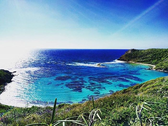 50 shades of turquoise!!! 🌊🌴🌅Morninghike Hike Caribbean Britishvirginislands Bvi Normanislandbvi