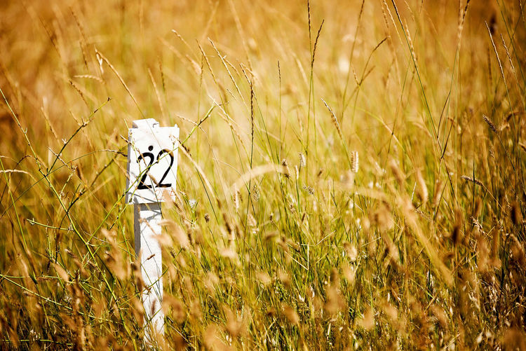 Number Sign On Grassy Field