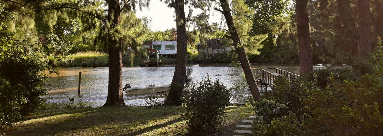 River Río Espera Atardecer Estilo De Vida Stylelife Islas Delta Tree Water Nature