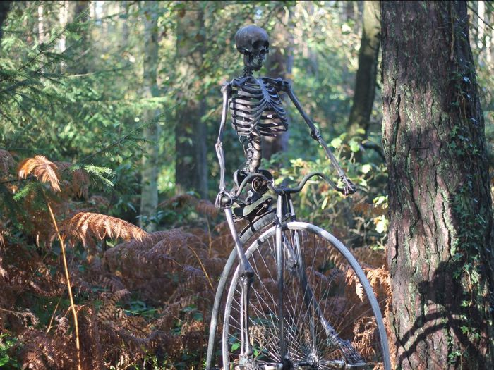 I want to ride my bicycle, i want to ride my bike, i want to ride my bicycle, i want to ride it where i like Streamzoofamily Autumn Lyrical Madness Check This Out