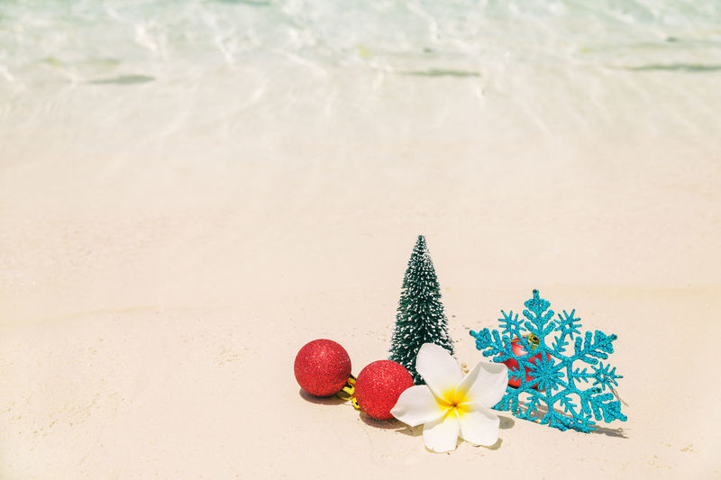 Christmas tree decorations on sea beach sand - winter holidays in tropics, Xmas festive concept 2018 Christmas NYE Red Ball Beach Blue Close-up Concept, Day Festive Fish Flower Food Freshness Multi Colored Nature No People Outdoors Sand Tropical Water