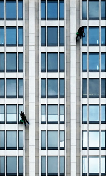 Low Angle View Of Window Washers