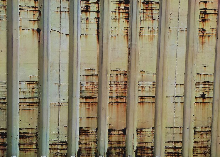 Full frame shot of bamboo by river against building