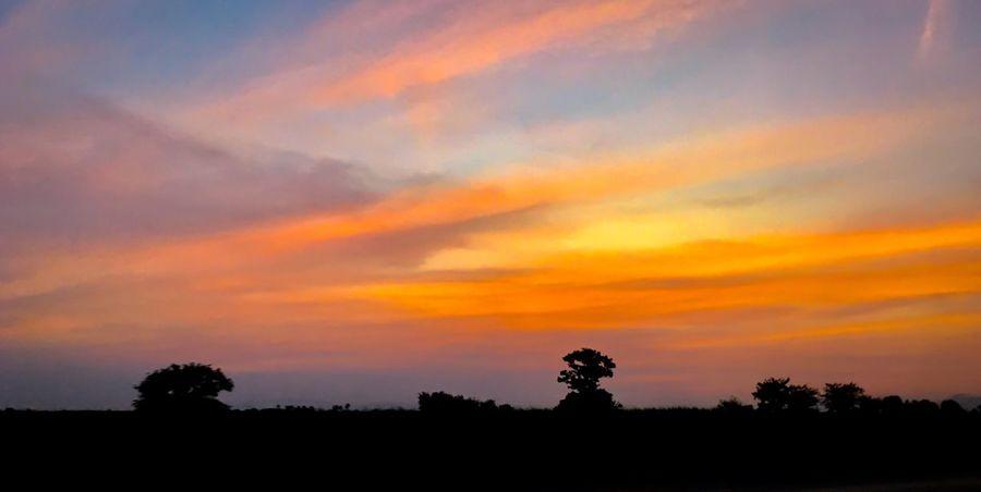 IPhone Photography IPhone SE Sunset Landscape Sky Beauty In Nature No People Sunrise Outdoors Scenics Thailand_allshots IPhoneography Thai IPhone Thailand Nature Photography Nature Nature_collection ทุ่งนา ธรรมชาติ