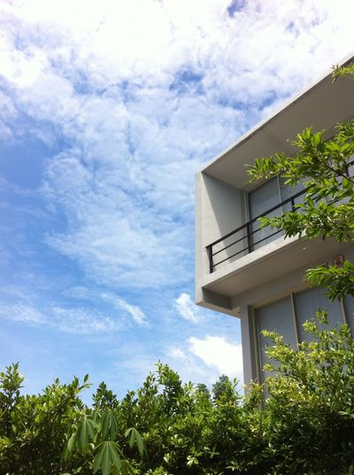 modern architecture in garden ArchitectureNature Architecture Modern House Garden Modern Architecture Modern Sky And Clouds Mobilestock Home House Leaf Sky Clouds And Sky Building Exterior Outdoors Leaves Tree Plant Modern Home Blue Sky Bluesky
