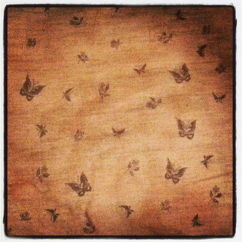 169/365 Oldpillow Butterflies