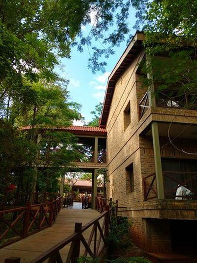 Village Cataratas Hotel Lodge Jungle Selva Iryapú Built Structure Architecture Building Exterior Tree House Outdoors No People Sky Day Nature Puerto Iguazu Misiones, Argentina Vacations Travel Destinations Forest