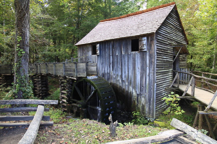 Watermill amidst trees at forest