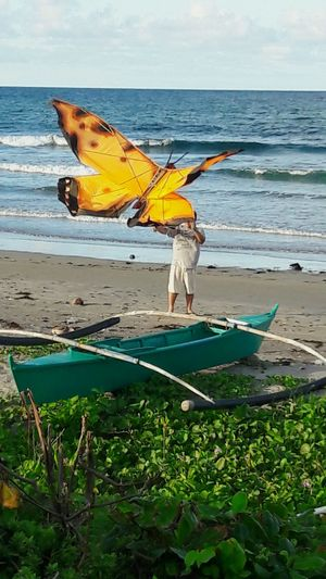 Butterfly Sea Beach Nature Outdoors Giant Butterfly Kite Kite Flying enjoying the sun beach and kite.