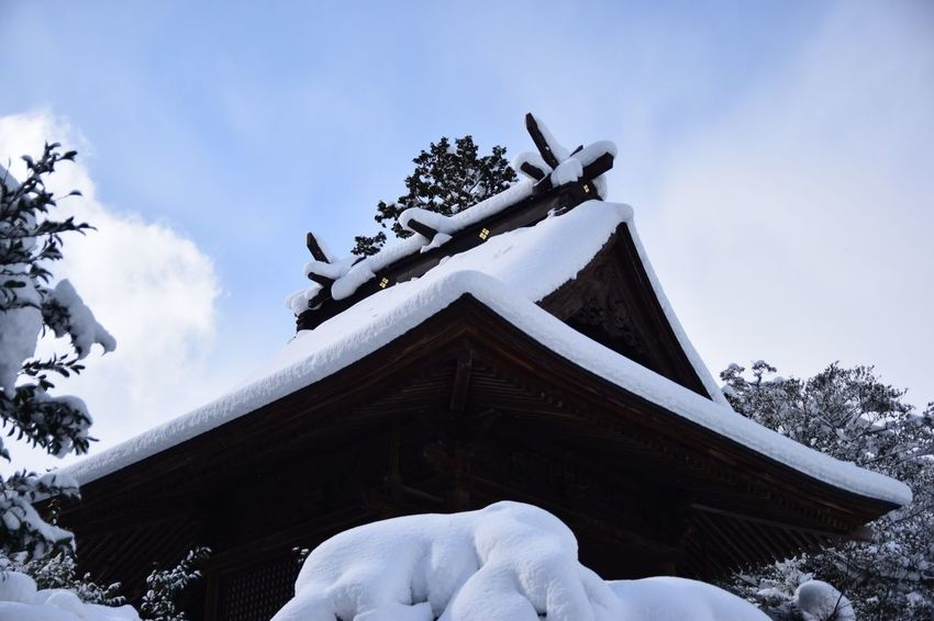 Shinto Shrine Cold Temperature Snow Winter Sky Architecture Low Angle View Built Structure