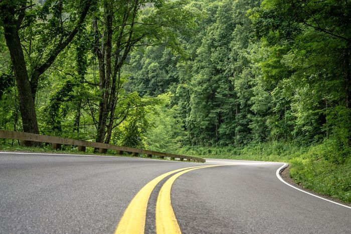 Less Traveled. Road Roadtrip Street Great Smoky Mountains National Park Trees Nature Travel Forest Woods Mountains