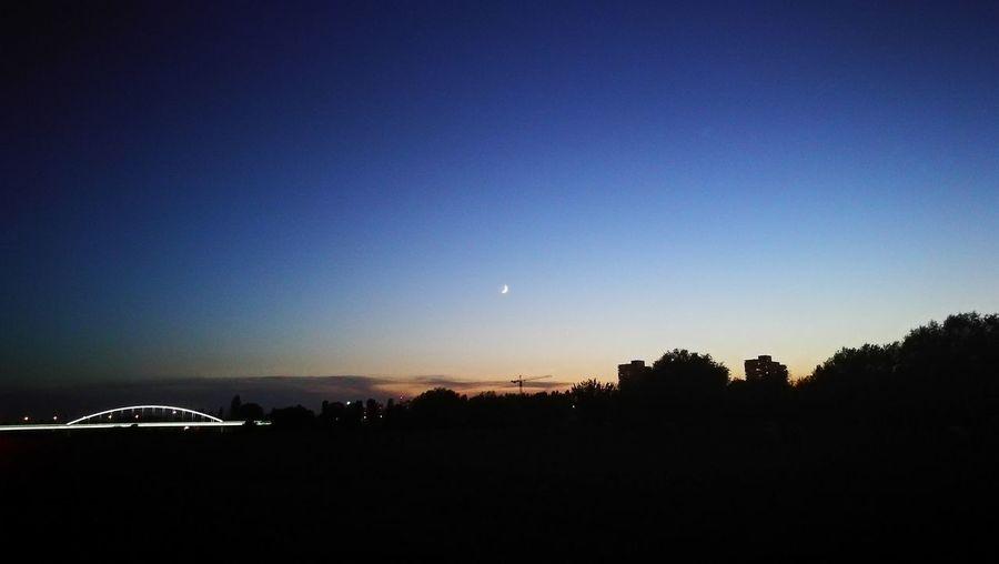 Night Moon No