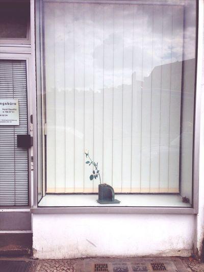 Shop Window Sad Bonjour Tristesse Kolonnenstr
