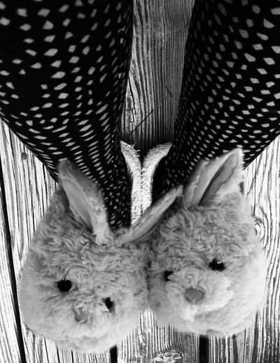 Yep, it's been that kind of day. Black and white and bunny slippers... 🤣😂 Lifestyles Animal Themes Close-up One Person Human Leg Low Section Blackandwhite Photography Lazy Day Bunnyslippers Relaxing Time Humor Tights MyDayOff