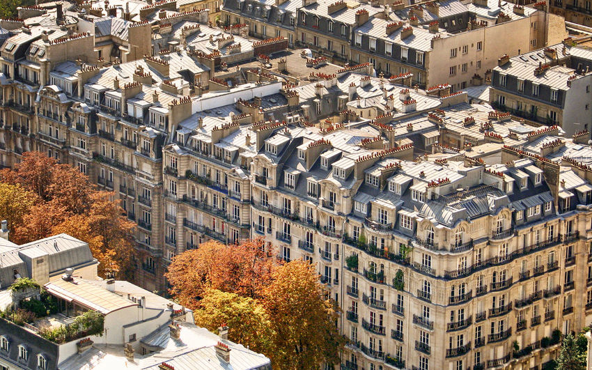 Apartment Architecture Autumn Building Exterior Building Story Built Structure City City Life Cityscape Day High Angle View House No People Outdoors Outside Chimney Paris Residential Building Residential District Residential Structure Roof Tree