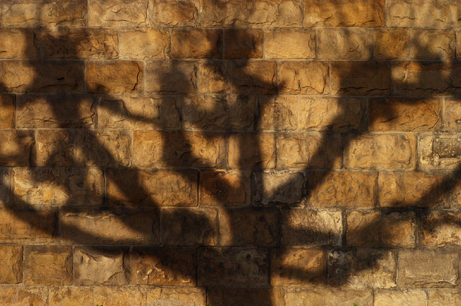 Getting Creative Light And Shadow Outdoors Rock Stone Stone Wall Textured  Wall