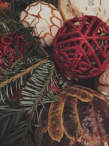 My Winter Favorites Christmas Decorations Soft Beauty Warmth Evergreen Red Mood