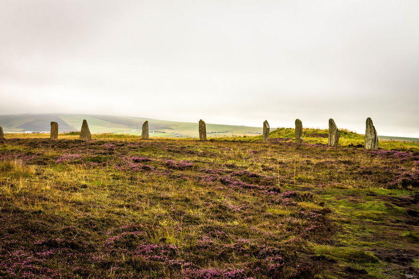Day Grass Heather History Nature Outdoors Stone Circle Stoneage Stones