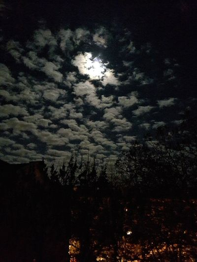 Sky No People Low Angle View Tree Nature Outdoors Night Galaxy Astronomy Novi Sad Cityscape Beauty In Nature Clouds Moon Moonlight Nightphotography Night Lights Night Sky Window View Rooftops