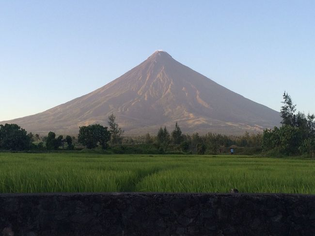 Mt. Mayon Perfect Cone Rice Field No People Legazpi, Albay Philippines