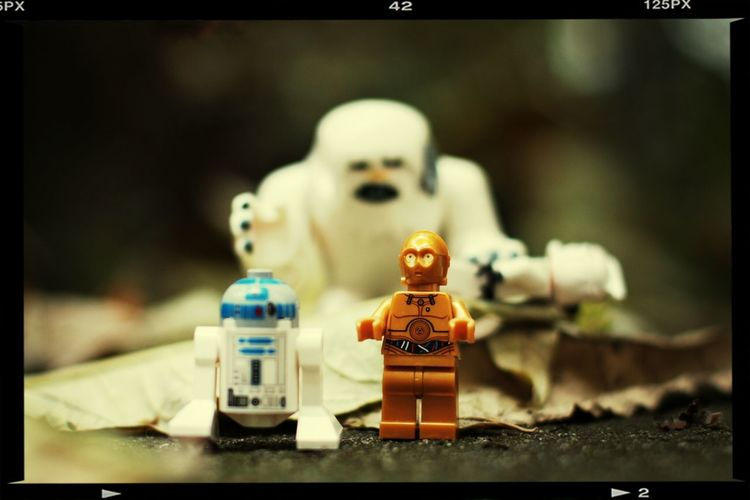 Lego Star Wars  in Autumn Colors .. Me And Yenn LEGO