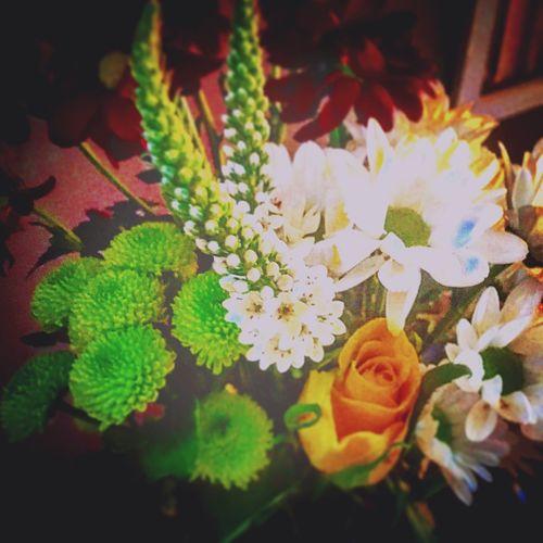Flowers Kas© Muddakas Roses Messedupjournal Green White