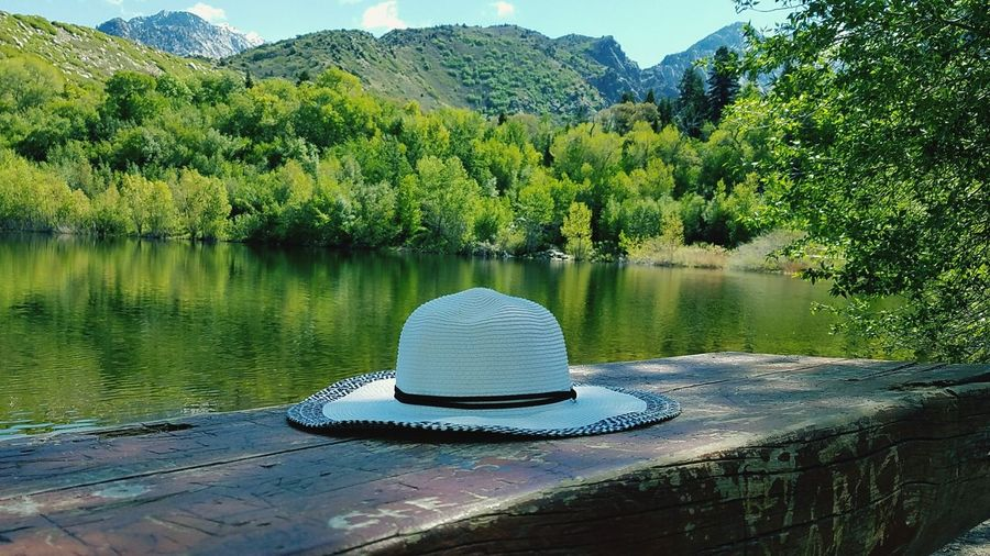 Hat Tree Summer Beauty In Nature Day Water Mountain Outdoors