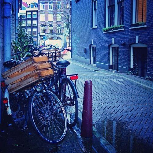 Amsterdam morning #blues ?☀️#amsterdam #allshots_ Capture_today Mashpics Top_masters Amsterdam From_city Holland Pro_shooters Blue Amsterdamthroughmycamera Bicycle Blues Frosty Igersholland Allshots_ Ic_cities Mokummagazine Insta_holland