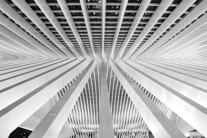 Calatrava in Liege Belgium, trainstation Luik-Guillemins. Architecture Black And White Photography Fotofantast Calatrava