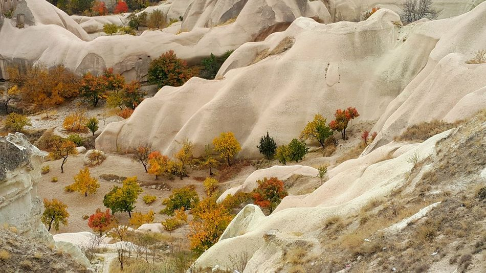 Nature Outdoors Göreme Landscape Cappadoccia Cappadociaturkey Kapadokya Kapadokya,Göreme,Turkey Nature Winter Close-up No People Beauty In Nature Day