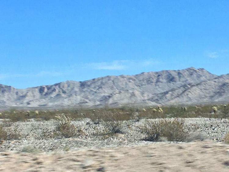 Landscape Desert Nature Arid Climate No People Cacti Blueskies Scenics Mountainscape Desert Terrain Desert Beauty Backroads