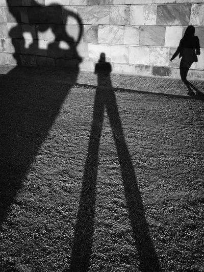 Shadow of people walking on street