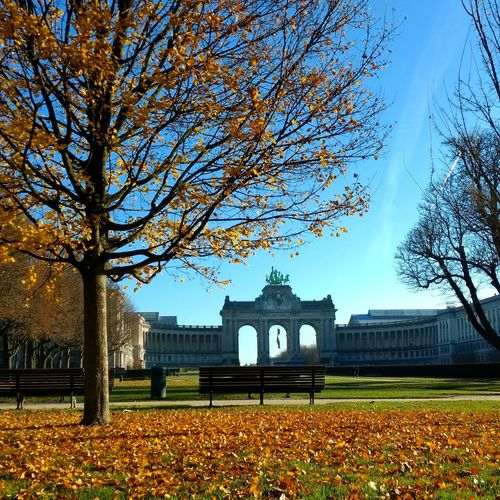 Belgium Travel Destinations Parc Du Cinquantenaire Brussels History Built Structure Politics And Government City Day Grass Tree Leaf Autumn Bruxelles