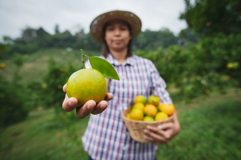 Man holding apple while standing in field
