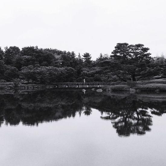 ShowaMemorialPark Japan