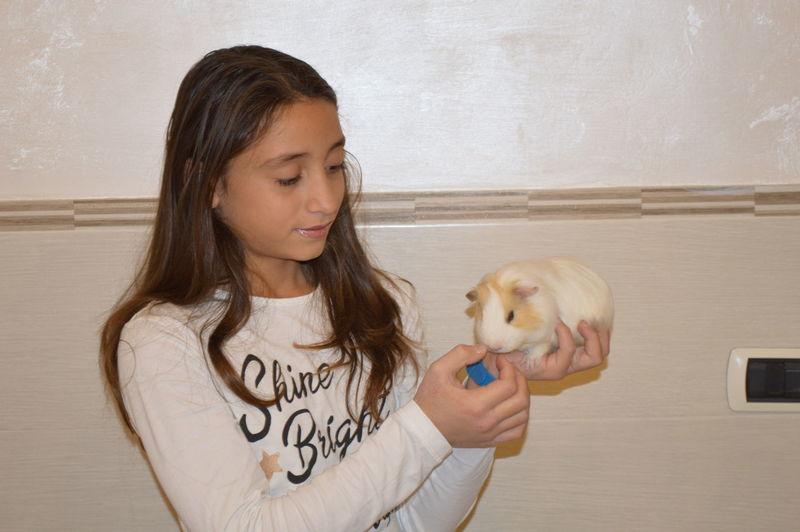 girl black hair with animal domestic Bambina criceto