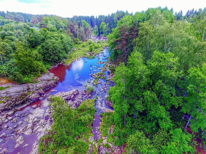 Nautelankoski Aerialphotography Beauty In Nature Freshness Green Color Lieto Aerial View Rocks And Water Flying High