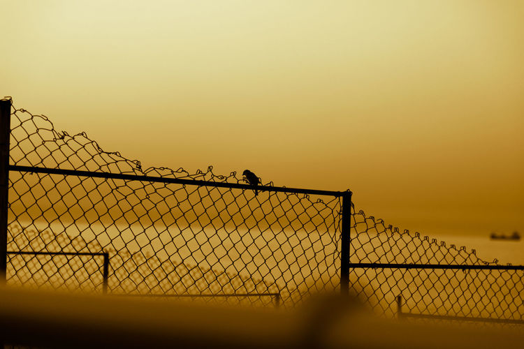 Silhouette chainlink fence against clear sky during sunset
