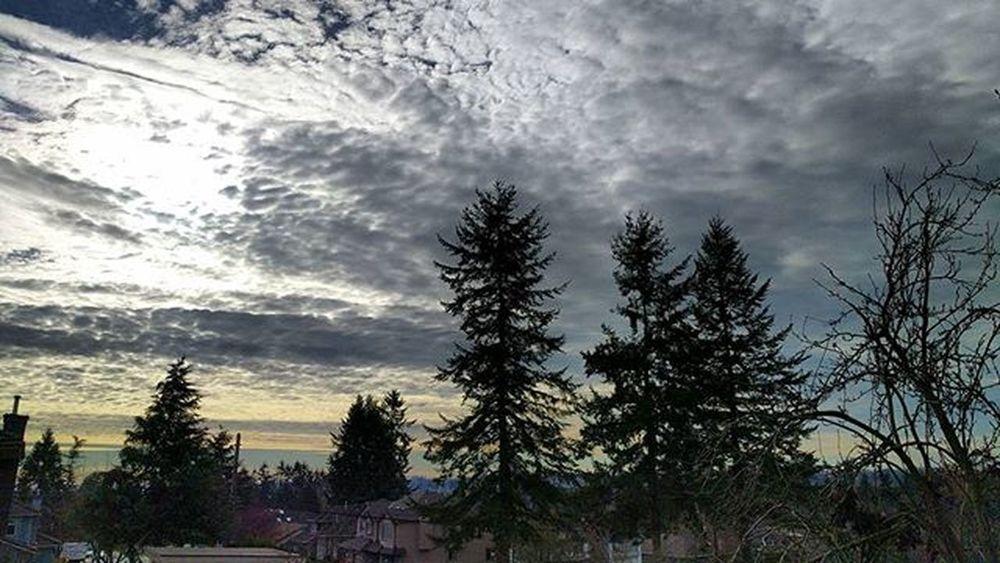 Cloudy Sunday! SurreyBC Vancouverbc