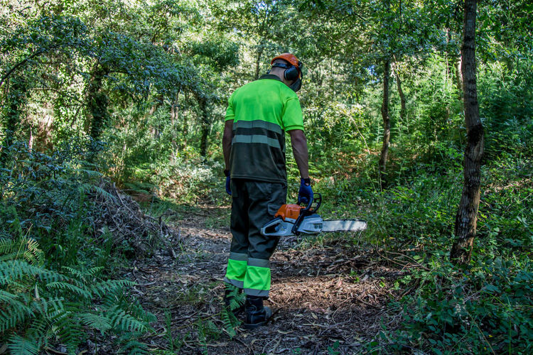 forest man working with chainsaw in forest