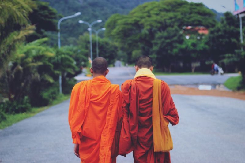 Rear view of monks walking on road