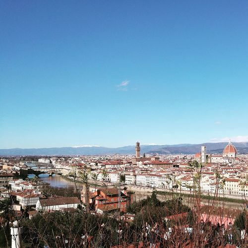 Blue Sky Arno  Cityscape View Piazzale Michelangelo Magic December Waiting Xmas Italy HuaweiP9 Huaweiphotography Leica Lens Tranquil Scene Travel Destinations Outdoors Day Sky Bird Animal Themes No People